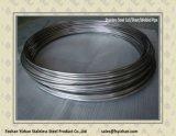tubo del acero inoxidable de 316L 15.88*0.8 para el cambiador de calor