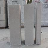 Bloc concret léger fait à l'usine de la Chine, bloc concret aéré stérilisé à l'autoclave, bloc d'AAC