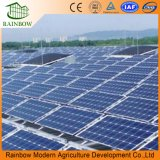 Paneles Fotovoltaicos De Alta Utilización De Invernadero De China