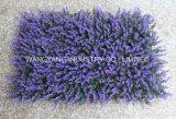 Erba artificiale variopinta del Boxwood di alta qualità per la decorazione