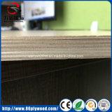 Grad-Birken-Furnier-Blattwerbungs-Furnierholz der Möbel-E1 E2