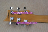 Las bandas labran/la carrocería y el cuello de caoba/la guitarra eléctrica de Afanti (APR-084)