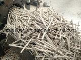 Dessiccateur en bois à hautes températures de extraction de sciure