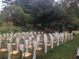 Couleur en bois bon marché Tiffany d'or Wedding des présidences avec des garnitures de portée