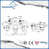 O banheiro Anti-Escalda o Faucet termostático do chuveiro (AF3212-7)