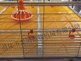H datilografa a capacidade de 3tiers Hudge de gaiola automática cheia da grelha