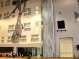 경기장, 스포츠 센터, 체육관을%s 극초단파 알루미늄 움직일 수 있는 벽