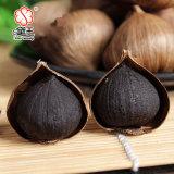 Singolo aglio organico cinese 900g del nero della lampadina