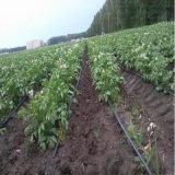 Boyau en plastique agricole d'irrigation par égouttement de PE
