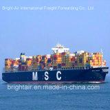 Transitário Contanier do oceano do serviço da logística de China a no mundo inteiro