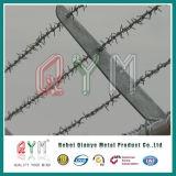 El alambre de la cerca del hierro del alambre de la lengüeta/galvanizó el alambre de púas/la bobina del alambre de púas
