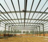 Magazzino della struttura d'acciaio con la parete del parapetto (SSW-163)