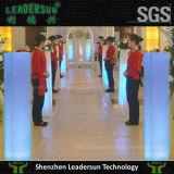 La lumière de fléau carré de Leadersun DEL