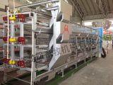 Heißer Verkauf galvanisierter Hünchen-Huhn-Rahmen