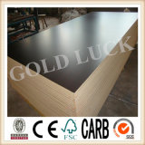 madeira compensada marinha laminada 12mm para o molde concreto