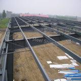 Magazzino d'acciaio leggero di alta qualità della costruzione con il grande disegno