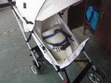 Baby-SpaziergängerPre-Shipmentqualitätsinspektion-Service in Dongguan
