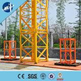 ニースの価格の電気ワイヤーロープのエレベーターの上昇の構築の起重機