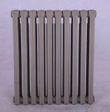Riscaldamento centrale, rendimento elevato, radiatore del ghisa, per il sistema di riscaldamento domestico