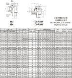 1ci/1di-Rnw Metirc Mann 24 Grad-Kegel/metrisches Banjo-hydraulischer Adapter von der Schlauch-Adapter-Manufaktur