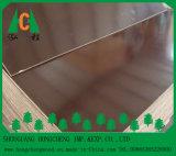 Brown/la película negra hizo frente a la madera contrachapada para el sector de la construcción