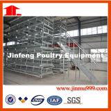 Gaiola automática/semiautomática da galinha da bateria das aves domésticas para o uso mais longo com alta qualidade