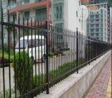 정연한 관 수비대 담 또는 강철 말뚝 울타리