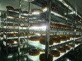 Atex 내염성 50-120W 유전 Mining LED Explosionproof Light