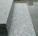 규격대로 잘린 자연적인 회색 돌은 화강암 층계 G603 G682 G664를 타일을 붙인다