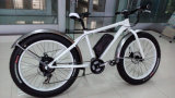 250W novo 36V MTB Hummer Electric Bicycle