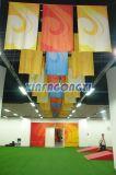 Straßen-Flagge-Zeichenkette-Markierungsfahnen-/Förderung-Hochzeits-Markierungsfahnen-Fahne