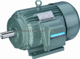 Three Phase Y Motors with CE Approved (Y132M-4)