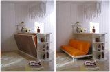 Horizotal傾斜ソファベッドFjは-42とSepsionホーム家具バー表