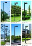 indicatore luminoso esterno del giardino del dissipatore di calore LED di 140lm/W Graphene