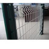 O PVC revestiu o engranzamento de fio soldado galvanizado