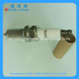 BMW Fr7npp332/Ilzfr6a11/Plfr6a-11/Plfr6b-10/Plfr6b10/7654를 위한 높은 Quaiity Auto Parts Ingintion System Ridium Spark Plug