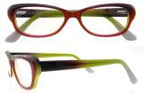 Gafas de Gafas para Gatos Populares Marcos de Acetato Óptico con Ce y FDA