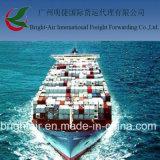 Custo da empresa de serviços do transporte do frete do Brilhante-Ar de Interantional da entrega do transporte do mar de China a no mundo inteiro