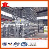 Jinfengからの自動か半自動Hのタイプ層の鶏のケージシステム