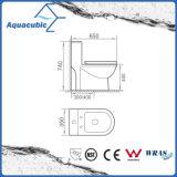 Toalete cerâmico do armário de uma peça só de Siphonic do banheiro (AT6000)