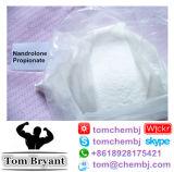 Nandrolone Propionate 처리되지 않는 분말 CAS: 7207-92-3