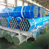 Tubo galvanizzato tuffato caldo di BS1387 ASTM A53 con le protezioni della plastica e dell'estremità filettata