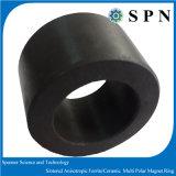 Anelli multipolari del magnete del ferrito sinterizzati ferrito di ceramica