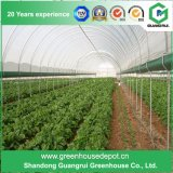 [مولتي-سبن] اقتصاديّة ودفيئة عمليّ نباتيّ