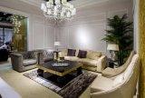 Italienisches Entwurf Nubuck Leder gepolsterte Wohnzimmer-Möbel-Serie