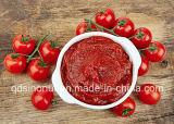 goma de tomate de 800g 22-24% para el MEDIADOS DE mercado del este