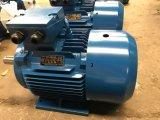 Высоко эффективный трехфазный электрический двигатель Y2-160m-4 (11KW)