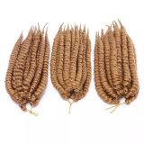 Crochet Braids avec le nouveau 12 pouces Mambo Twist Havana Hair