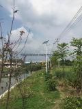 indicatore luminoso di via solare di 7m 25W LED (DZS-07-20W)