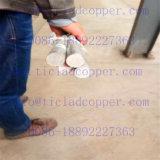 Anode van het Koper van het titanium de Beklede voor het Leveren van Stroom in de Installaties van de Elektrolyse/Eindigende Industrie van /Metal van de Terugwinning van het Metaal